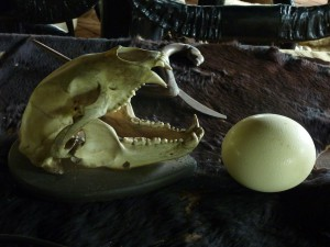 Baandam Skull and Egg