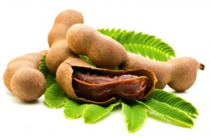 Fresh Tamarind with leaves (photo credit: indianbeauty.tips)