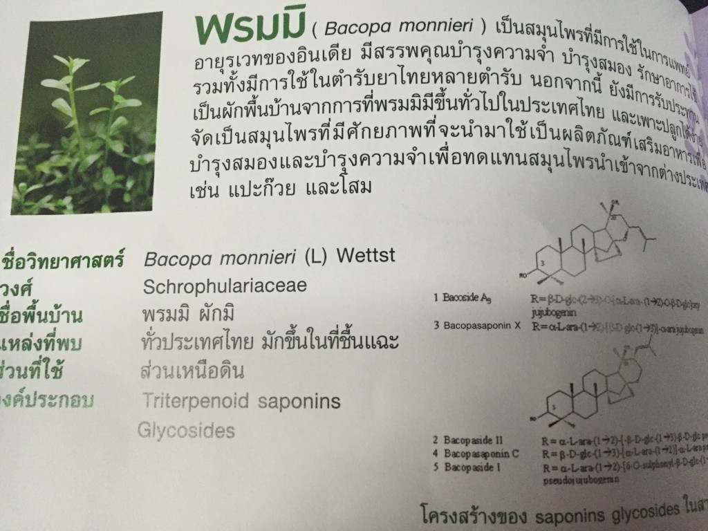 Bacopa monnieri inside brochure with english name