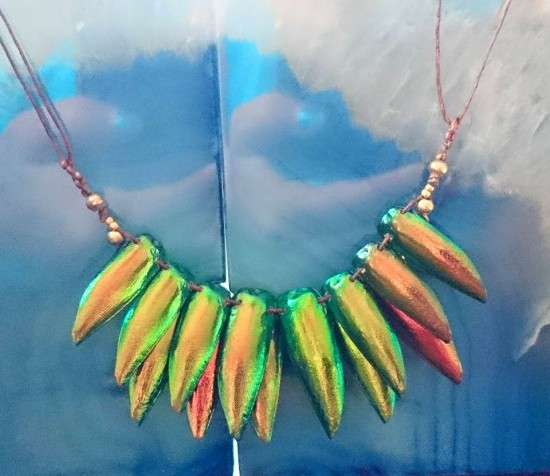Necklace with jewel beetle (photo credit: 3rd Rock Jewelry, FB page)