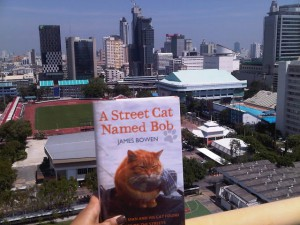 A Street Cat Named Bob in Bangkok, sairung changkhamchom