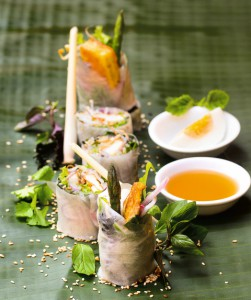 Spring rolls with tumeric from Vietnam (photo: Rice noodle soup with chicken from Vietnam (photo: ©Christian Verlag / Heike Leistner)